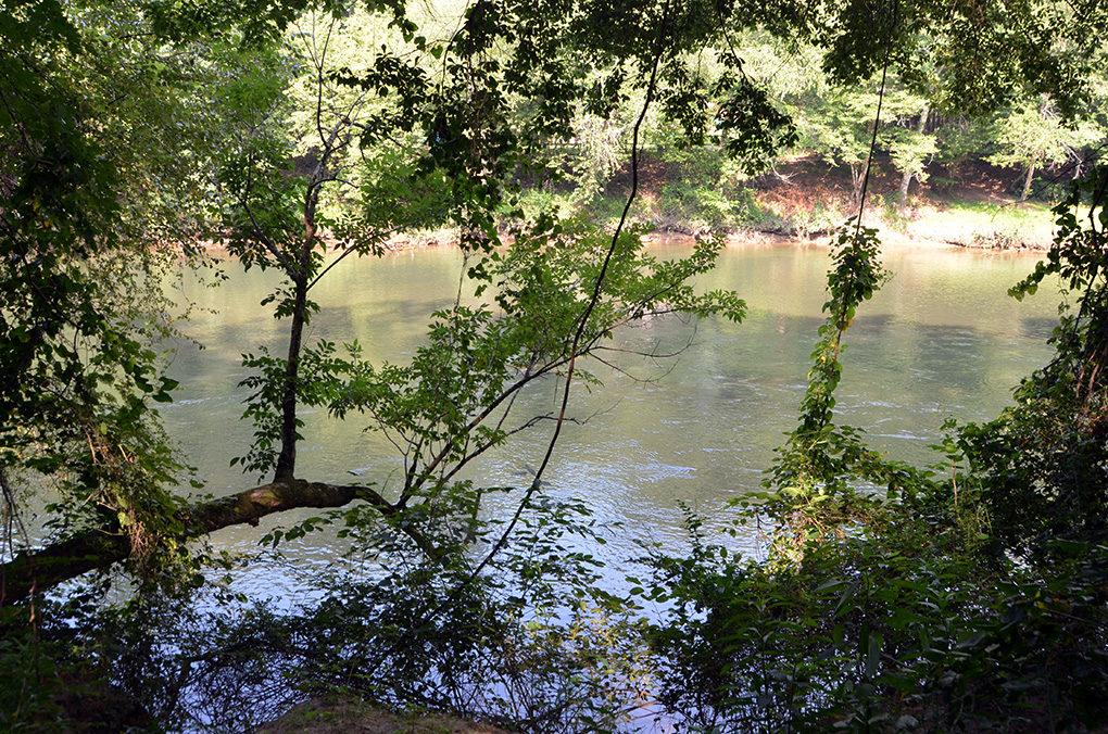 Neely Farm river view